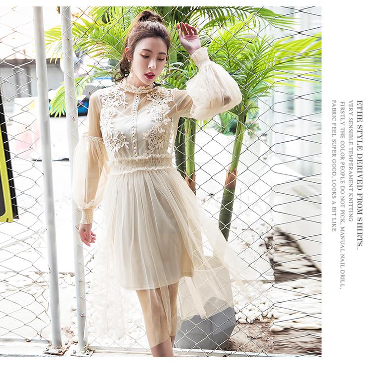 19 New Women Fashion Dress Stand Collar Lantern Sleeve Mesh Dress See-through Lace Embroidery Fairy Dress Femme Vestidos Robe 7
