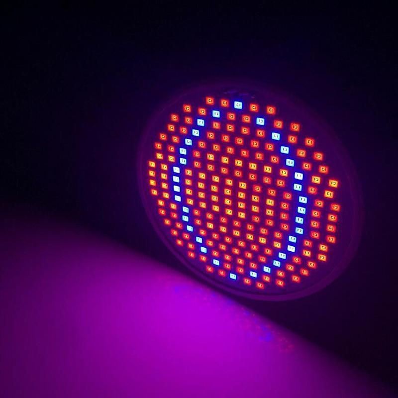 1 հատ 200 LED E27 բույսերի աճեցման լույսի - Մասնագիտական լուսավորություն - Լուսանկար 6