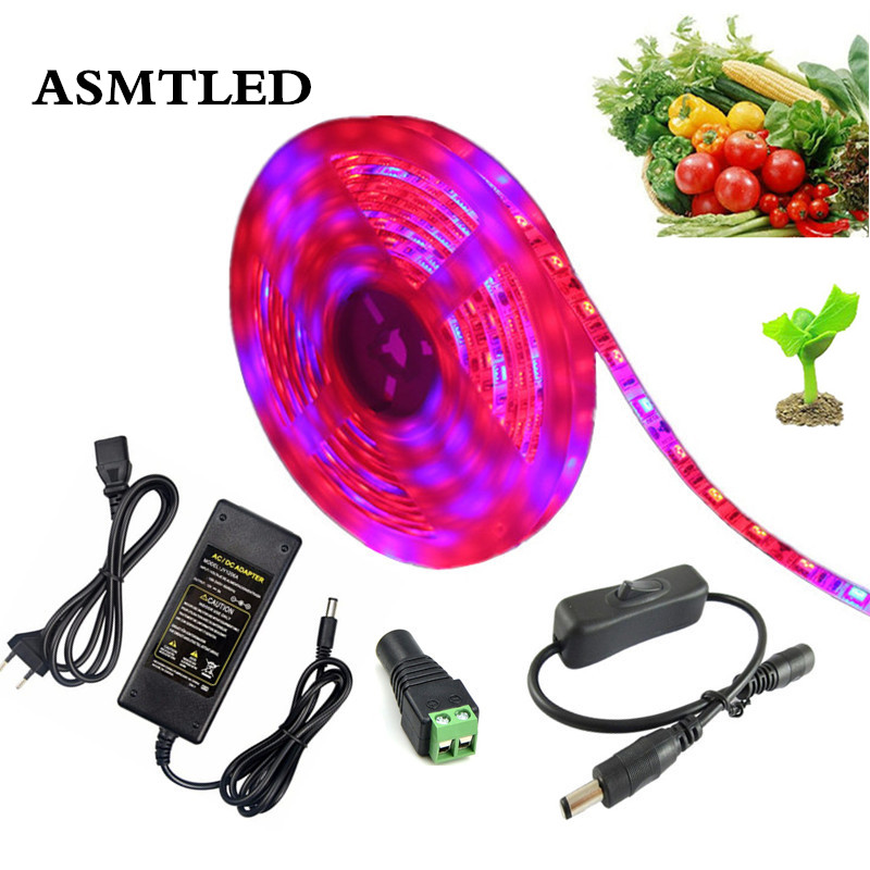 5050 LED Grow Lights DC 12V Plant Growing LED Strip Light Tape Set With Power And Switch For DIY Aquarium Greenhouse Hydroponic