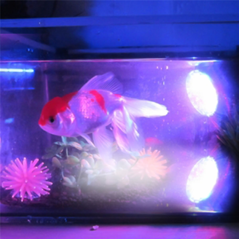 36LED Color Changing in sequence Submersible Aquarium Spot Light Fish Tank Garden Founta ...