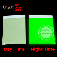 Glow In Dark Pigment Yellow Green Light Color Long Last Glowing Luminescent Powder Noctilucent Powder 1pack
