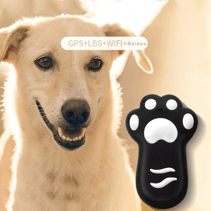 Dispositif intelligent de positionnement Anti-perte de livres de localisateur de GPS d'animal familier pour des chats de chien LXY9 AP16