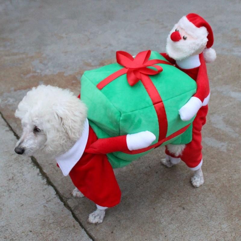 Christmas Dog Clothes (4)