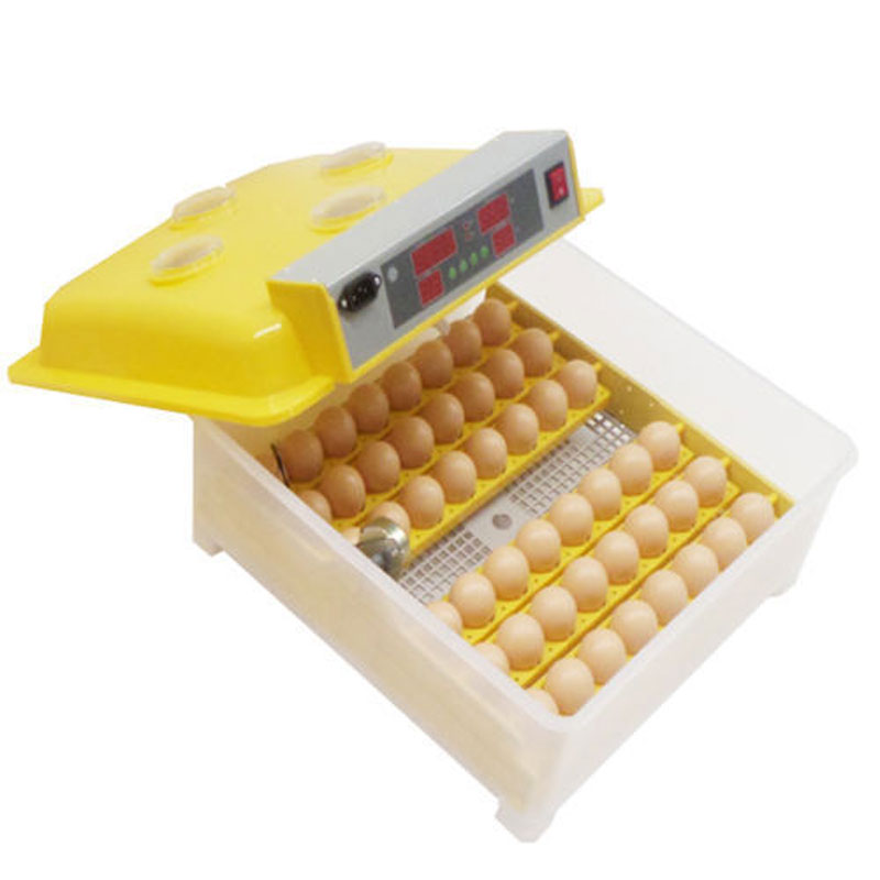 High quality 48 Eggs Incubator Digital Temperature Control Incubator With View Holes Automatic Turning Hatcher Supplier 1pc lot 48 eggs digital clear egg incubator hatcher automatic turning temperature control janoel8 48