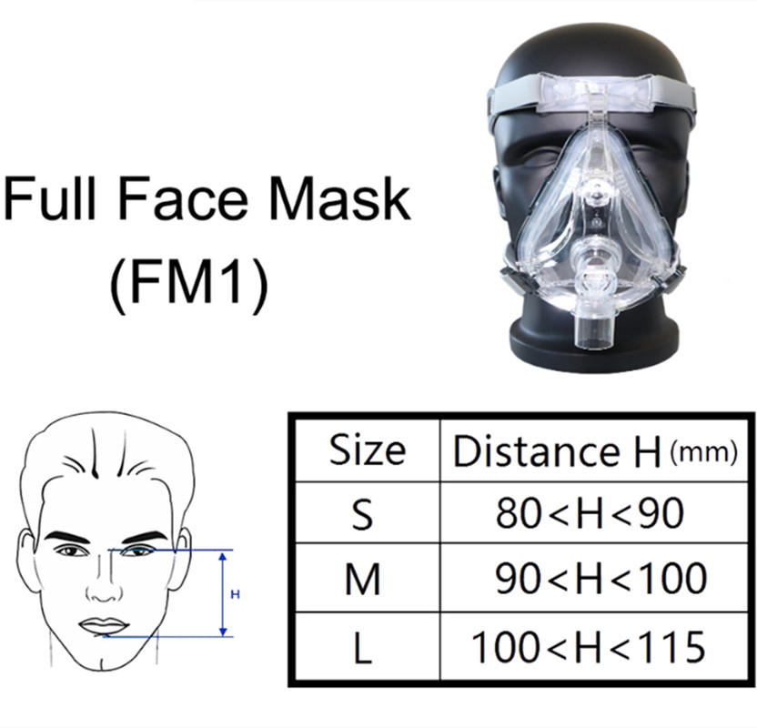 Full Face Mask