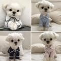 Luxus Kleidung für Hund Mode Hund Pyjamas Pet Kleidung für Kleine Mittelgroße Hunde Kleidung Mantel Yorkies Chihuahua Bulldogs Jacke 20D-in Hundemäntel und -Jacken aus Heim und Garten bei