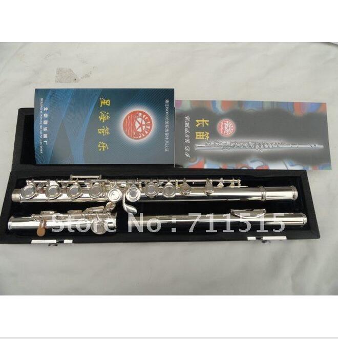 La La Hourse Store Western Concert Flute Silver Plated 16 Holes Plus E Built Split Obturator Woodwind Instrument with Mini Screwdriver Nylon Bag