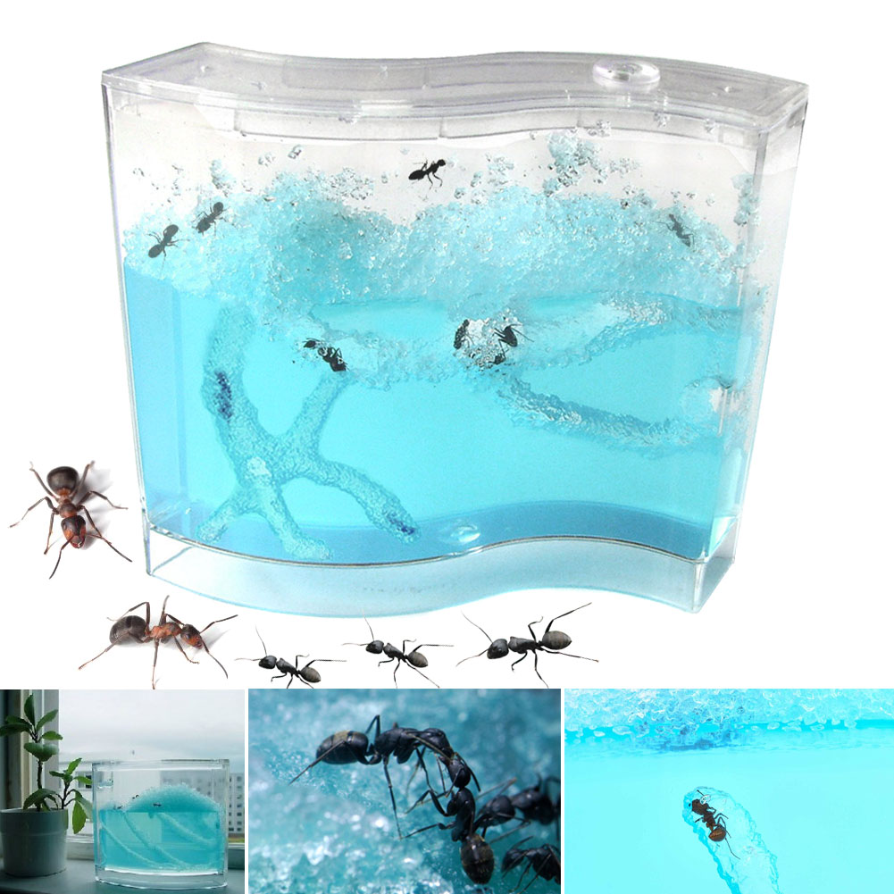 New Blue Gel Ant Farm AntWorks Ant Home AntWorkshop Educational Toy  AN88
