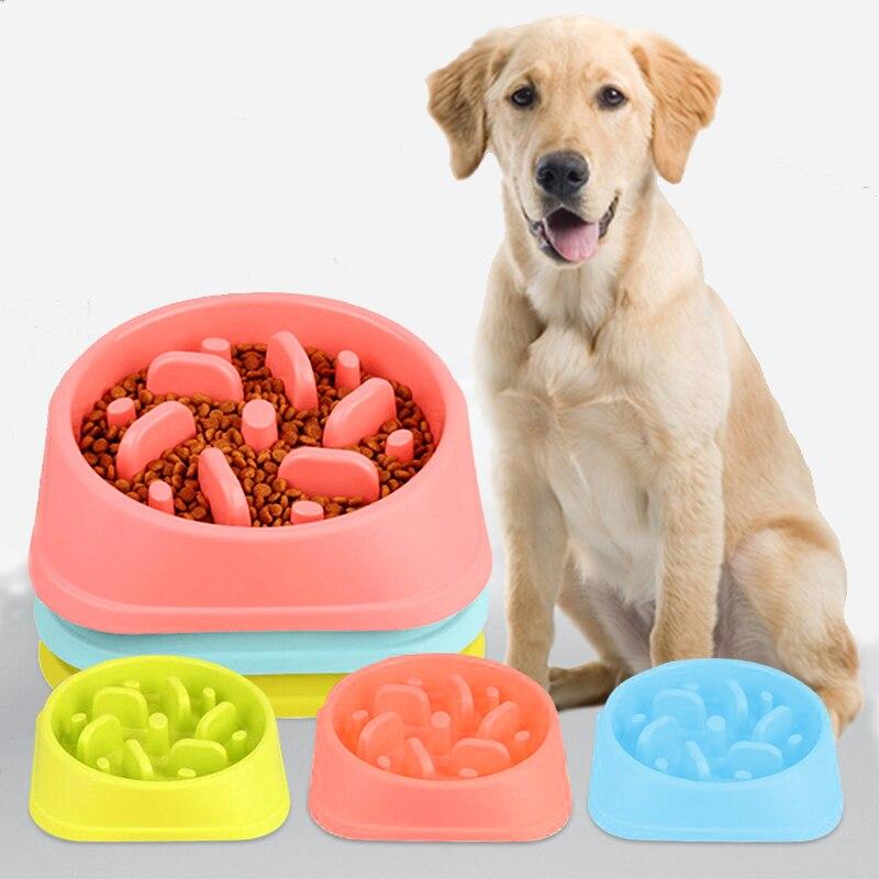 Dog Food Bowl Pet Ca
