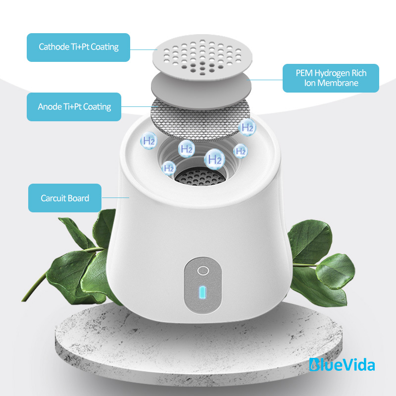 Bluevida SPE/PEM without chlorine, O3 and max high 2800ppb new Hydrogen Rich Generator Water Ionizer Bottle