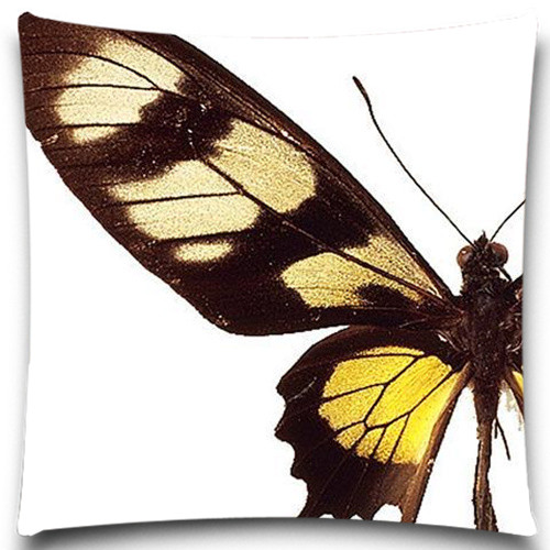 Butterfly Specimens Natural Style Cotton Polyester Pillow Case 16 18 20 24  Inch Decorative For Sofa Car Chair Seat Home Textile