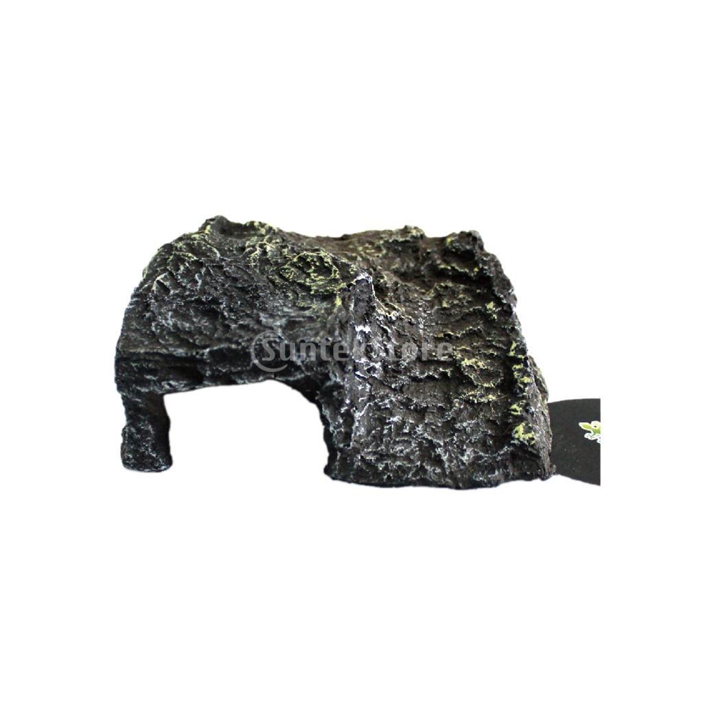 Рептилия Террариум Виварий скрыть пещера черепаха лягушка плавающей платформе Pier рок