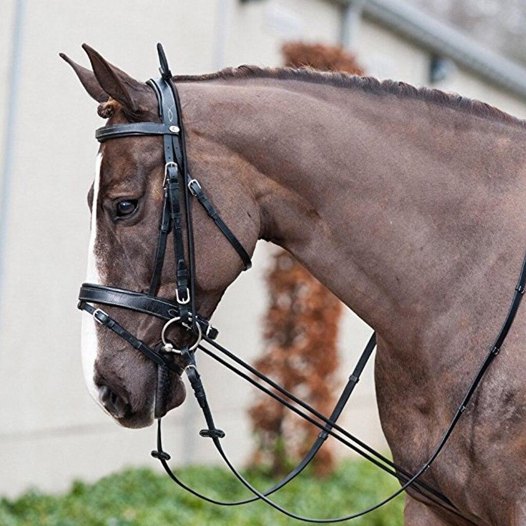 Конные носилки черного цвета на шею, эластичный конский Рейн, веревка для конного спорта, оборудование для обучения молодой лошади, принадлежности 10 футов/3 метра в длину
