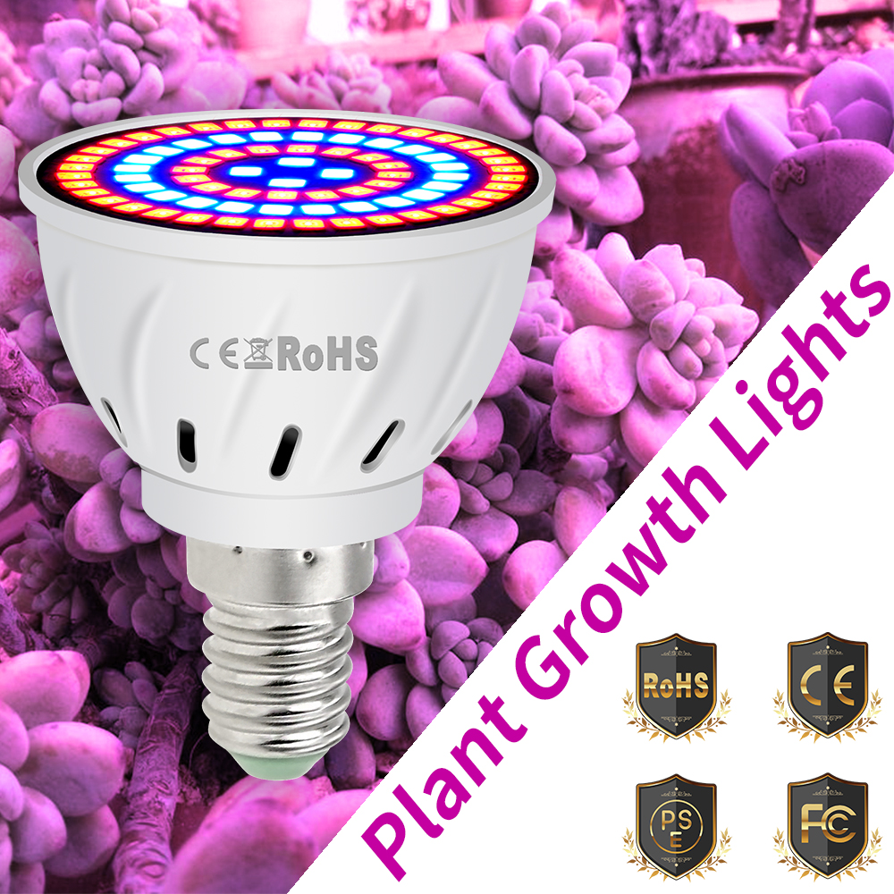 E27 Led Plant Grow Light 220V E14 Plant Lamp MR16 Led Grow Bulb GU10 Lampe Culture Plante Gu5.3 Red Blue Lamp For Plants Growbox