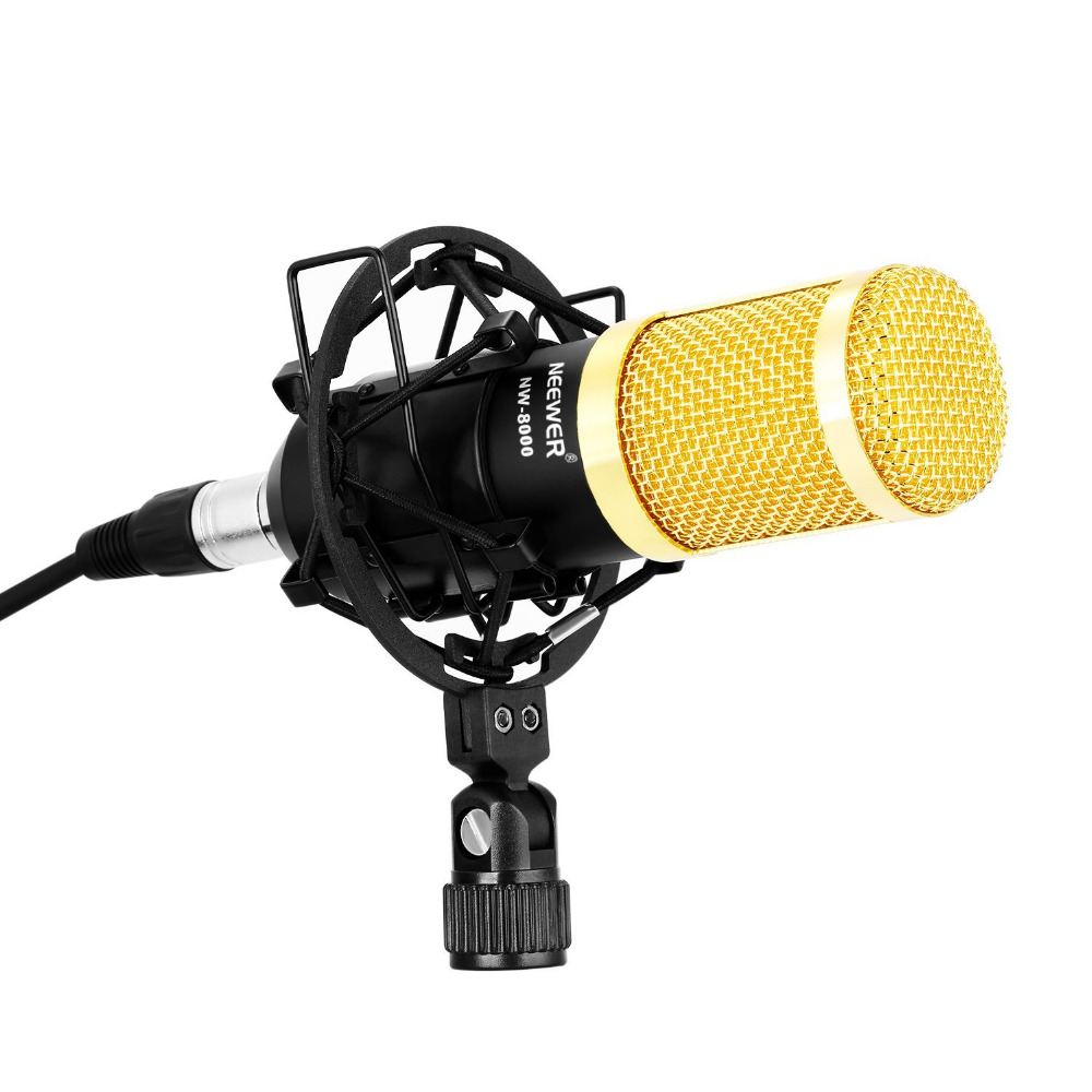 Neewer Nw-8000 Professional Studio Recording Microphone Set,including:microphone,shock Mount gold Anti-wind Foam Cap,lr Cable