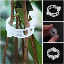 50 шт. прочные 30 мм пластиковые зажимы для поддержки растений для типы растений Висячие лоза садовые теплицы овощи садовый орнамент L4