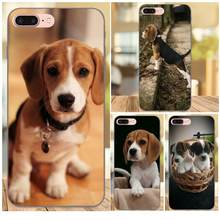 Sweet Beagles Puppies Loyal Dog For Apple iPhone X XS Max XR 4 4S 5 5S SE 6 6S 7 8 Plus TPU Case(China)
