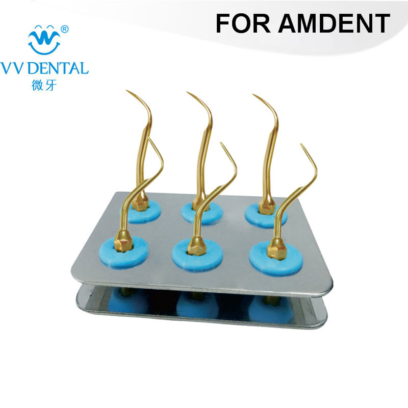 ASKG Scaler Standard Kit GOLD for AMDENT DENTAL SCALER WITH AMDENT #37 #39 TIPS цена