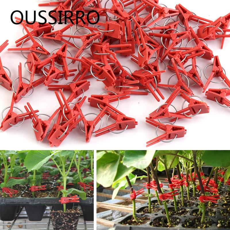Red Plastic Grafting Clips Plant Support Clips Vine Garden Vegetables Plants Hanging Plastic Vegetables Garden Ornaments