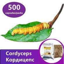 Cordyceps תפטיר 500 טבליות/חבילות, סיני קטרפילר פטרייה, Cordyceps sinensis, aweto, משלוח חינם