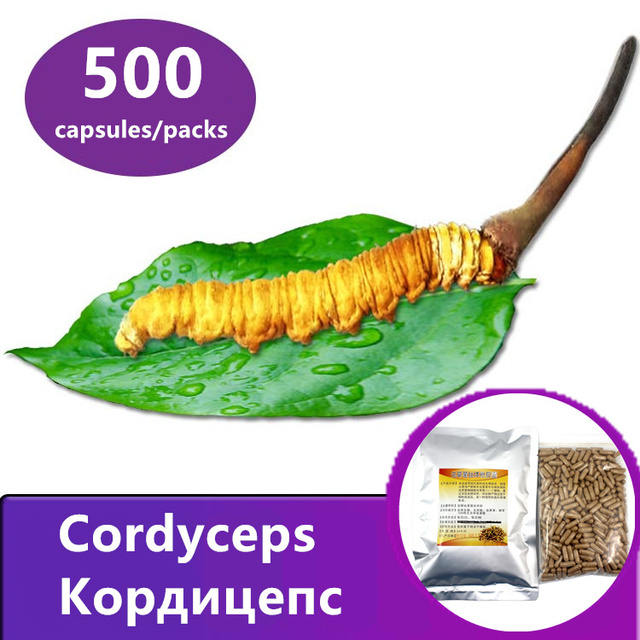 Cordyceps mycelium 500 Tablets/packs, Chinese caterpillar fungus, Cordyceps sinensis, aweto, Free shipping