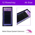 Free shippping individual new matte Ellipse flat eyelash extension 1 trays each lot , All size available: J,B,C,D