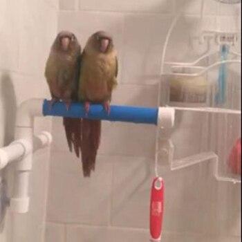 High Quality Parrot Bath Shower Standing Platform Rack Parrot Climbing and Biting Shower Perch Parakeet Bird Toy Random Color 4