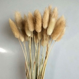 1 Bunch Natural Rabbit Tail Grass Dry Flowers Bouquet House Garden Festival Wedding Decoration DIY Shooting Props Accessories