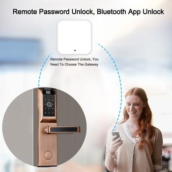 Eseye Smart Door Lock Biometric Fingerprint Lock Digital Door Lock Electronic Lock Remote Control Safety For Home Family