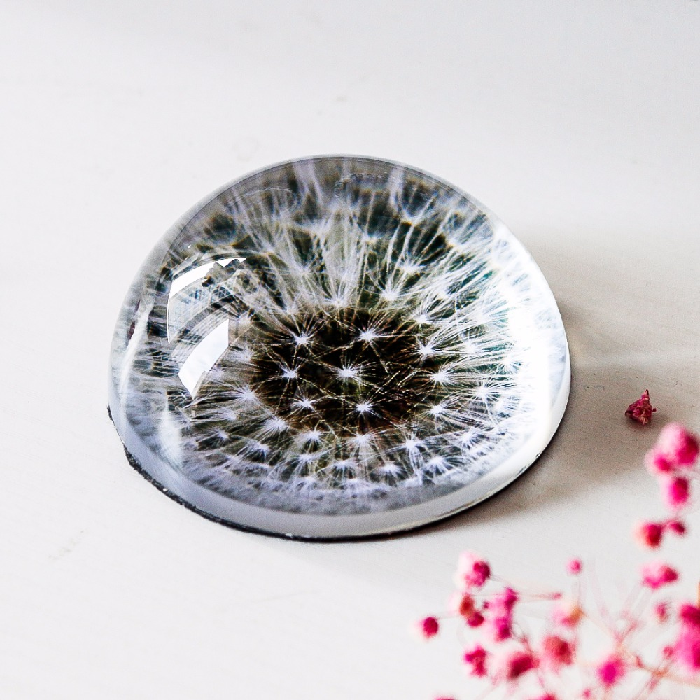 HampD 3inch Crystal Glass Dandelion Half Ball Paperweight Quartz Sphere Fengshui Ornaments Home