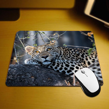 Mairuige The Cool Hadsome Animals Pattern Mousepad Mini Size Pc Table Leopard Jaguar Funny Mouse Pad Mats for Decorate Desktop