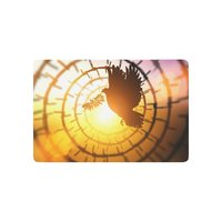 Anti Slip Door Mat Home Decor Dove Carrying Olive Leaf Branch Flying In Circle Barbed Wire
