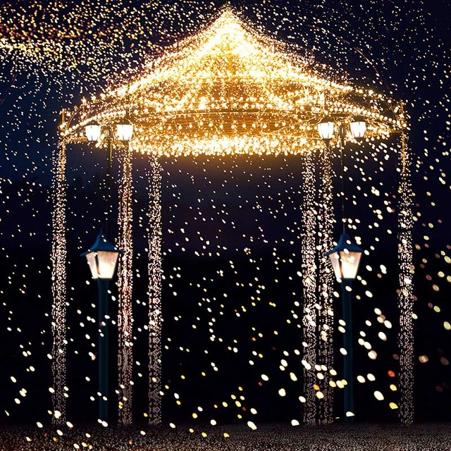 Vinyl Photography Background Star Highlights Romantic Aesthetic Fireworks Castle Wedding Backdrops For Photo Studio CM