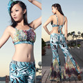 603 fancy cloth belly dance set belly dance clothes set leotard set  Free Shipping