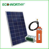 ECO WORTHY 100W 18V Solar Panel with 12V Deep Well Subersible Pump for Wishing Farm Ranch