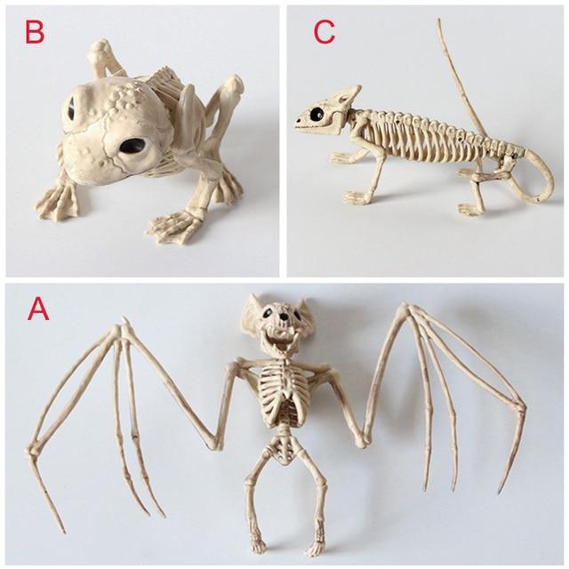 Interesting Hot Animal Skeleton Model Bat/Frog/Lizard Bones Halloween Party Decoration XH8Z AU14