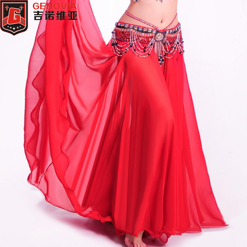 Chiffon Long Skirt with Coins Hip Skirt Swing Skirt Belly Dance Costumes
