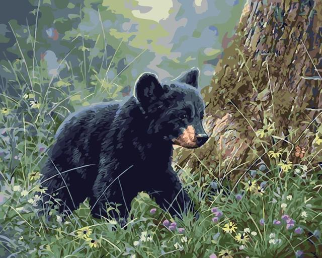 Black Bear Painting By Numbers Home Wall Art Picture Handpainted Oil ...