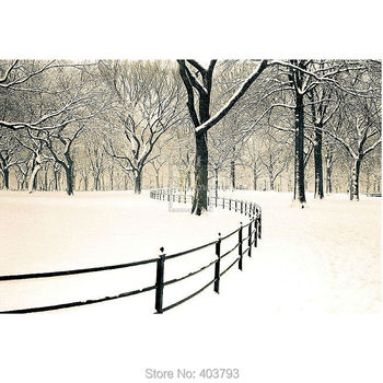 Unframed Central Park Snow Landscape oil painting Or Various Sizes Hand Painted Famous Modern Wall Decoration
