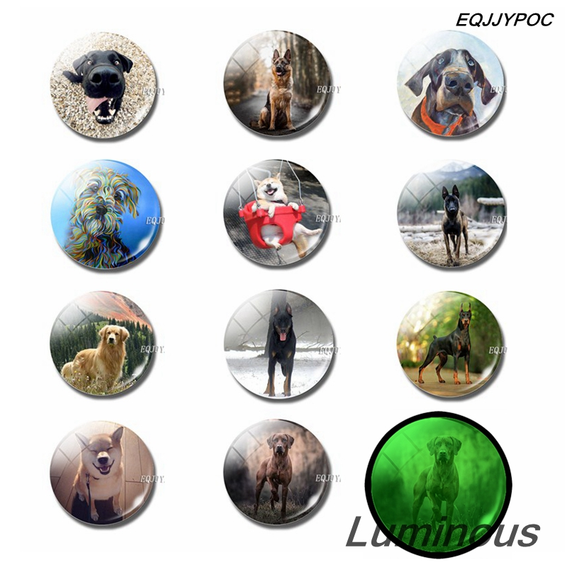 Luminous Dog Fridge Magnet Set 25 MM Glass Dome Magnetic Refrigerator Magnets Cute Animals Home Decor Puppy Lovers Gift in Fridge Magnets from Home Garden