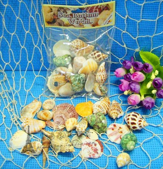 2013 Natural shell photography props DIY handmade fish tank decoration wholesale 10packs/lot free shipping