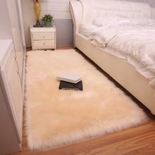 Simple modern plush carpet living room sofa mats bedroom bay window fur imitation wool decorative floor fashion rug DT-60