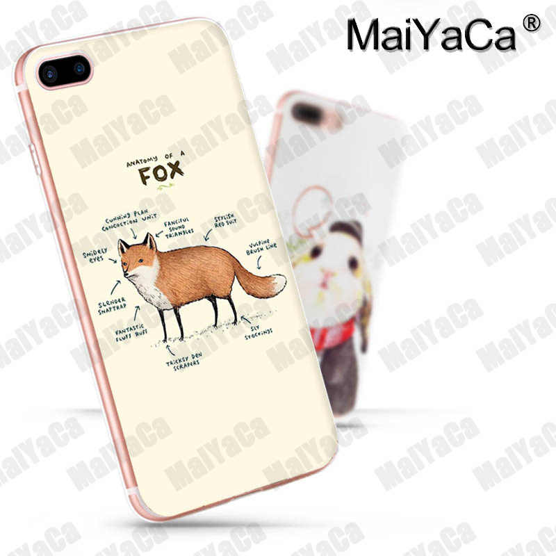 Anatomy of a Fox iphone 11 case