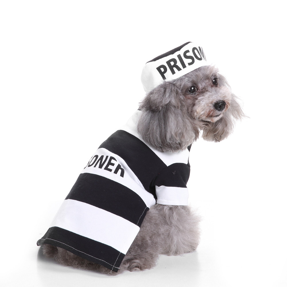 Dog Clothes For Small Dogs Pet Products Clothing Cool And Cute Pet Cosplay Costume Dog Pet Costume Clothing
