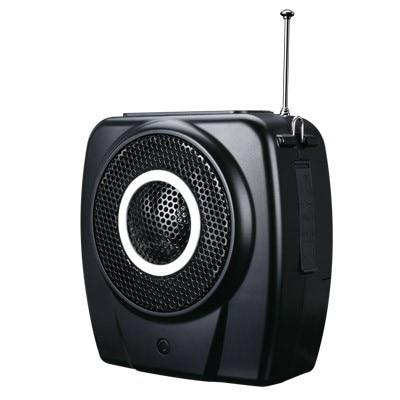 Popular Brand Takstar E9m Recreation Fitness Loudspeakers Wireless Remote Control Multimedia Recording Fm Megaphone Support U Flash Tf Card Supplement The Vital Energy And Nourish Yin