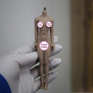 Image 3 - TBLeague 1/12 kadın vücut figürü kafa heykel PHMB2018 T01 güneş/soluk renk aksiyon figürü bebek koleksiyon Model oyuncaklar