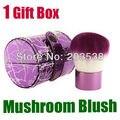 Free Shipping+Drop Shipping New 2013 Fashion Special Pro Mushroom Blush Loose Power Make up Brush+Gift Box Makeup Brush