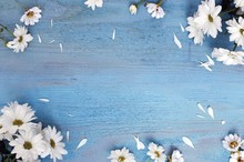 Laeacco Blue Wooden Board Blooming Flowers Petals Photography Backgrounds Customized Photographic Backdrops For Photo Studio