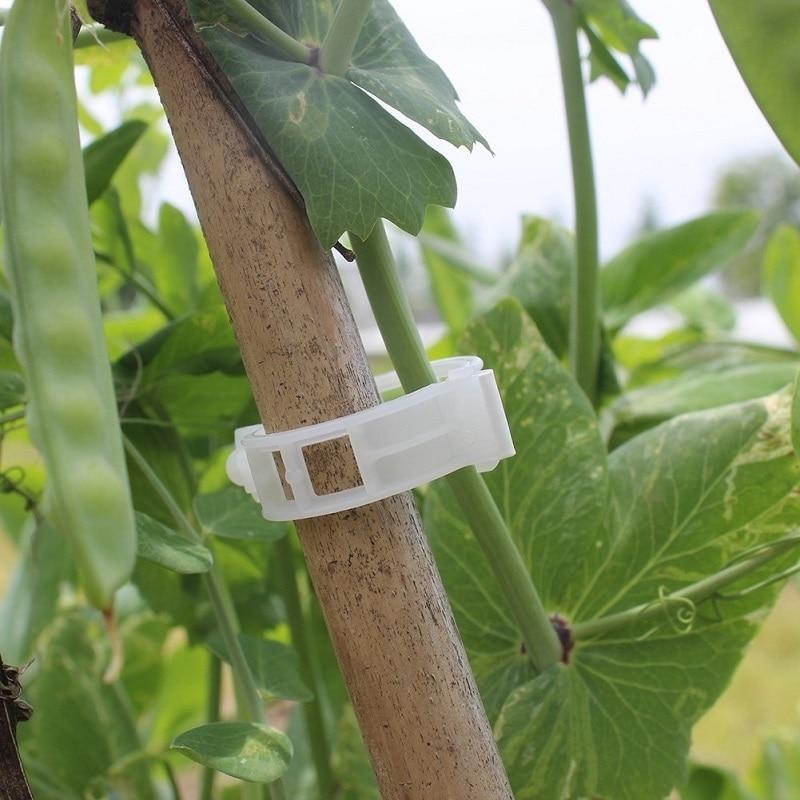 50pcs/100pcs/150pcs/200pcs Plastic Plant Support Clips For Types Plants Hanging Vine Garden Greenhouse Vegetables Garden Tool