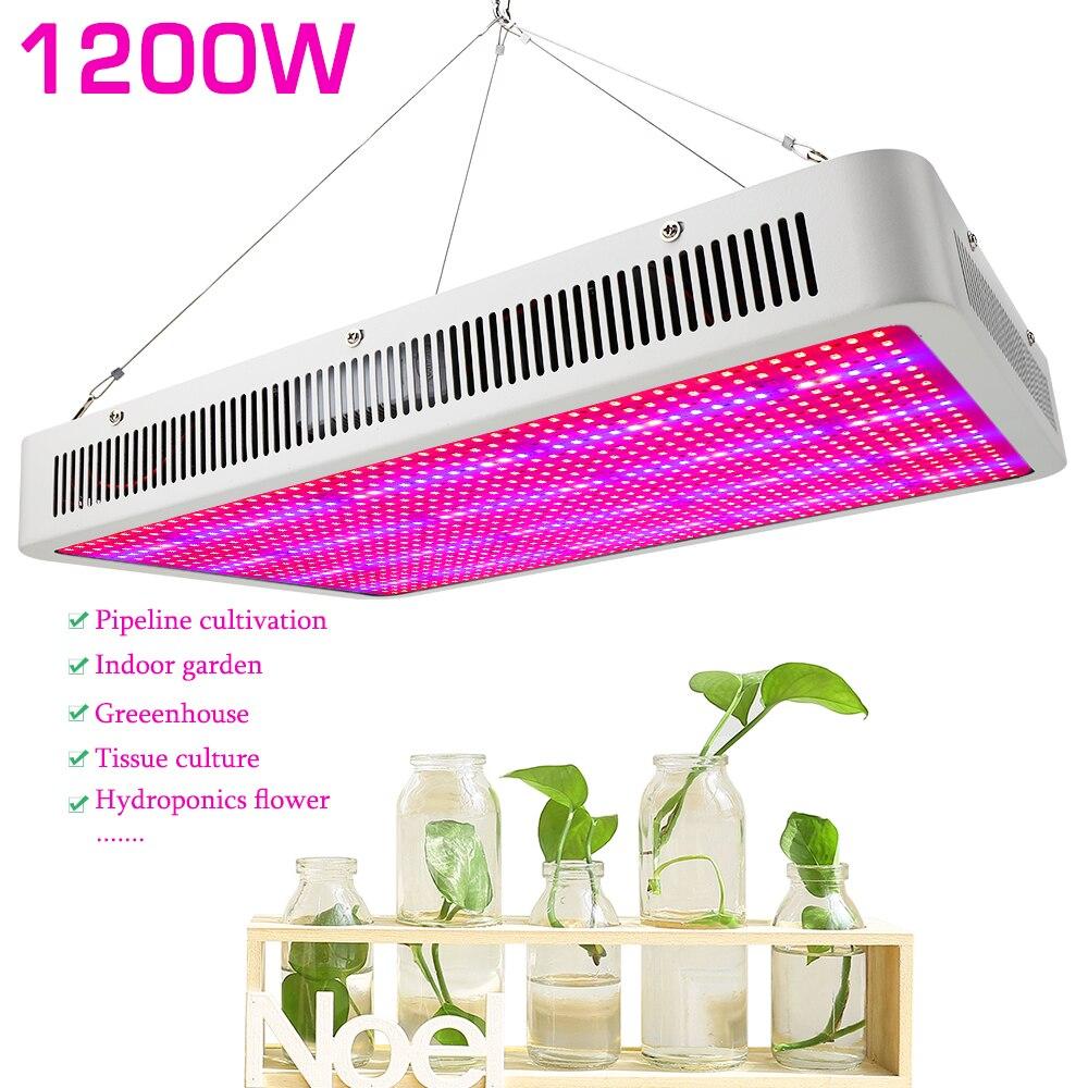 Повний спектр 1200 Вт Світлодіодний - Професійне освітлення - фото 2